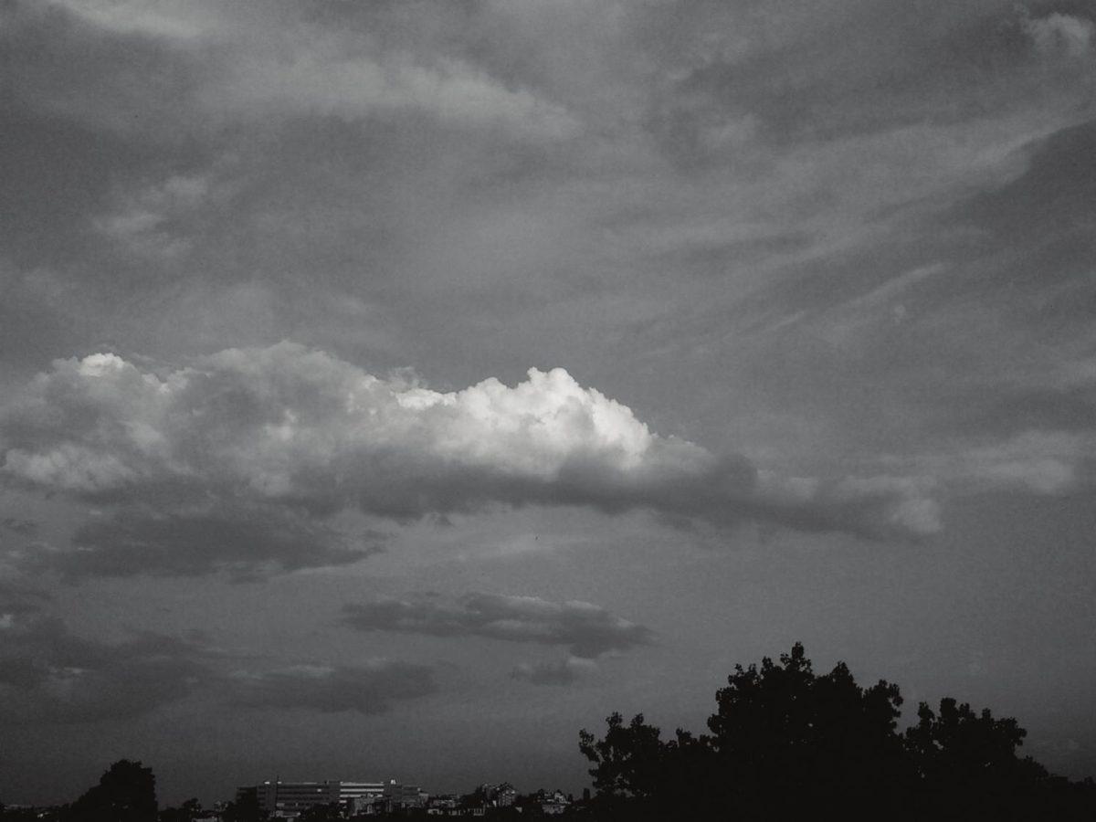 http://www.petkovstudio.com/bg/wp-content/uploads/2016/08/page_8-1200x900.jpg